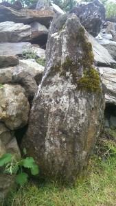 Devon Granite Stone